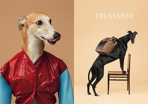 Trussardi-SS14-adv-dog