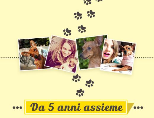 Sonia-Camilla_friskies_infografica