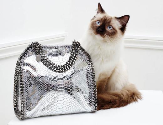 gatti stella mccartney 2016