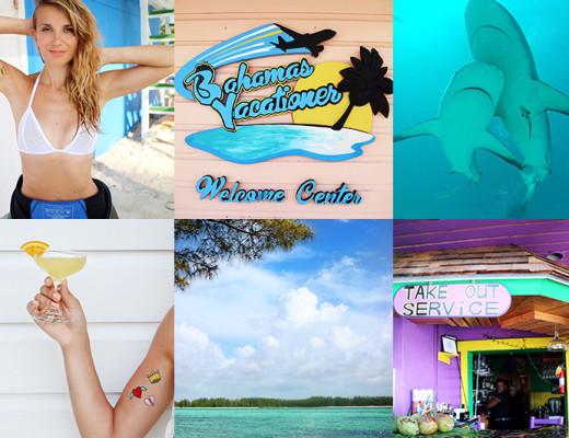 Bahamas- cosa fare, dove dormire e come provare l'emozione di nuotare con gli squali