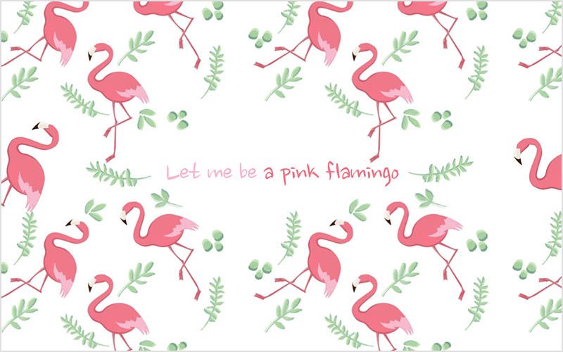 sfondo wallpaper flamingo