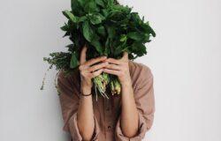 mangia vegetariano vegano falsi miti e le basi
